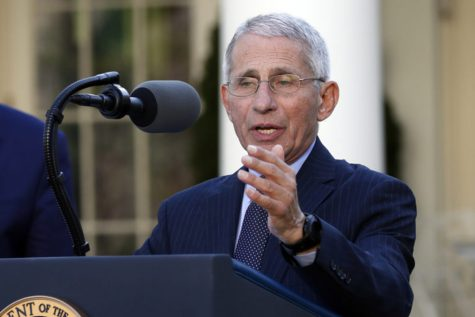 "Dr. Anthony Fauci, the director of the National Institute of Allergy and Infectious Diseases, is pictured at a White House press briefing. Fauci  is among the proponents of Coronavirus antibody testing, ""This study will give us a clearer picture of the true magnitude of the COVID-19 pandemic in the United States by telling us how many people in different communities have been infected without knowing it."""