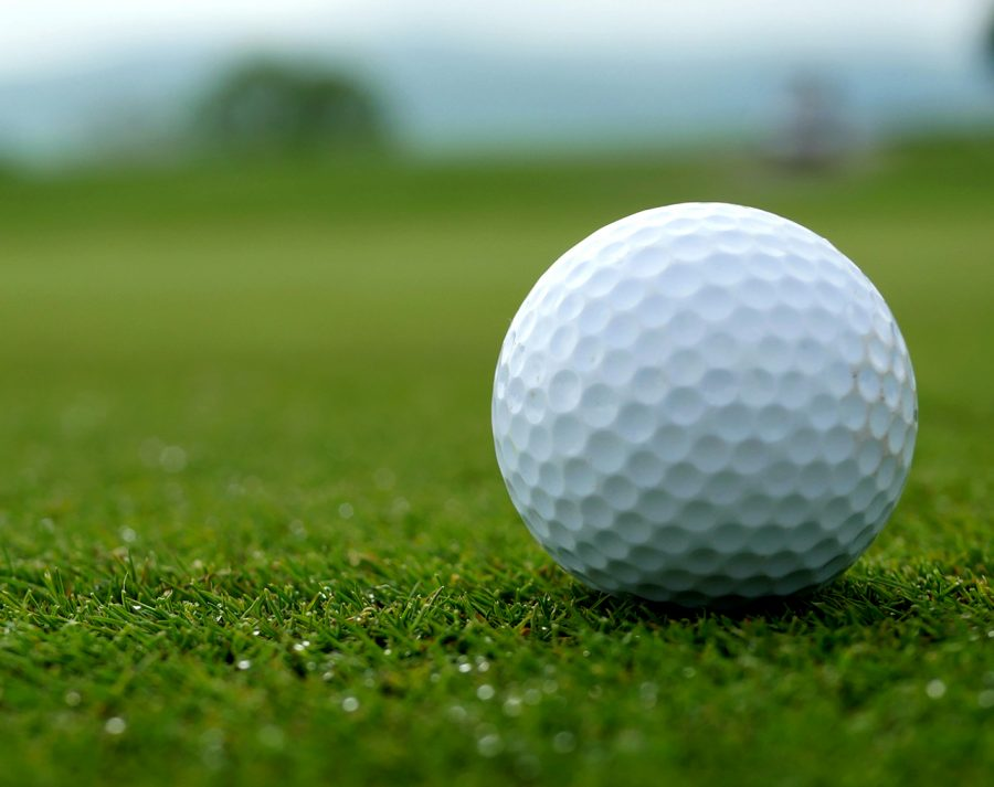 The+Spring-Ford+girls+golf+team+is+expecting+a+strong+season+this+year+in+the+Pioneer+Athletic+Conference.+